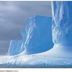 Антарктика Снимка: forbes.com
