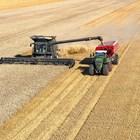 За 10 г.: Фермите у нас по-малко, но по-големи