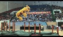 Зад кулисите - танц на дракон и лъв