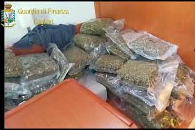 Пазарната стойност на  на дрогата е за 1,5 млн евро. СНИМКИ: Финансова гвардия на Сардиния