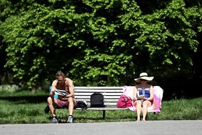 Търсете сянка, водни площи, зони с растителност - те са най-доброто място в града през лятото. СНИМКА: РОЙТЕРС