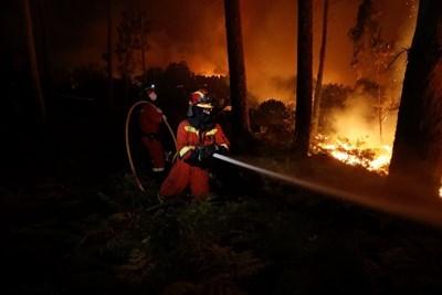 Миналата година повече от 100 души станаха жертви на горските пожари в Португалия. Снимка РОЙТЕРС