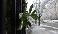 И утре ще вали сняг в Югоизточна България и Родопите