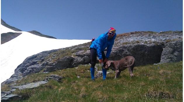 Денали - единственото куче алпинист на Балканите