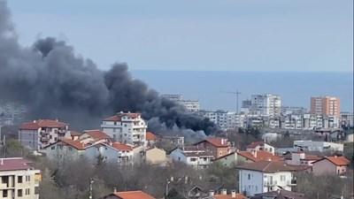 Кадър: Фейсбук видео П. Николова/Забелязано във Варна