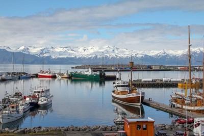 Исландия СНИМКА: Pixabay