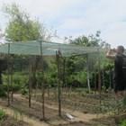 Защитна мрежаза зеленчуците
