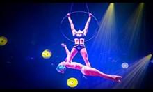 Издънки в цирка