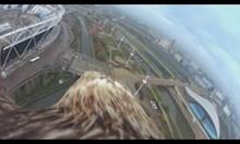 Орел с камера на гърба улавя уникална гледка към Лондон