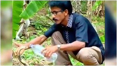 Смел индиец утоли жаждата на отровна кобра, като й поднесе в устата вода от пластмасова бутилка Къдър: Туитър