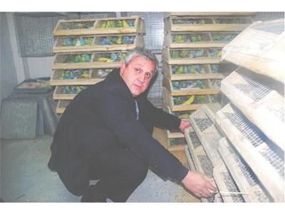 Служител на митницата при задържаните папагали СНИМКА: АРХИВ
