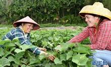 Минуш Шафик: Успехите на Китай в борбата с бедността са феноменални