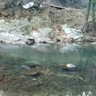 Високи са нивата на замърсяване в река Юговска.