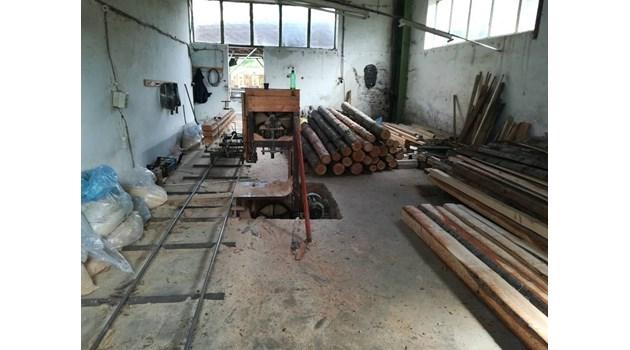 Разкриха незаконна дървесина и нелегален цех за преработка в шивашка фирма във Велинградско