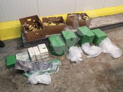 Пакетите кокаин били скрити на дъното на кашони с банани.  СНИМКИ: Авторът СНИМКА: 24 часа