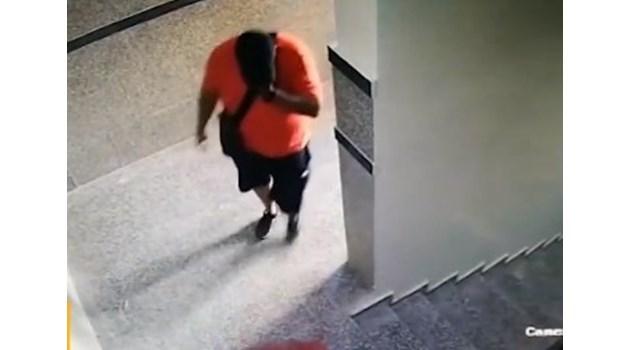 Камери в блока на говорителката на СГС заснели мъжете, обрали апартамента й (Видео)