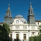 Обсъждат 6 проекта на мерки в лозаро-винарския сектор за новата ОСП