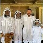 Дейвид Бекъм споделя първите си стъпки в пчеларството заедно със своите деца.