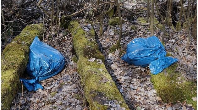 Германия подготвя закони за забрана на пластмасовите торбички