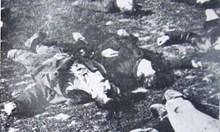 За смъртта на 12 младежи във Ваташа. И за Кървавия Божик. Време е за прошка