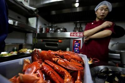 Китайски готвач в ресторант подготвя омари, които се внасят от Бостън, САЩ. СНИМКА: РОЙТЕРС
