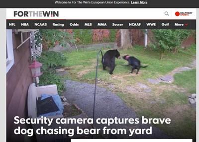 Факсимиле: ftw.usatoday.com