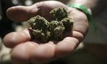 Арестуваха дилър с 320 грама трева и амфети