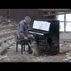 Непокорни маймуни се прехласнаха по световни класики на пиано (Видео)