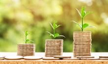 Пет лесни стъпки за да вземете онлайн кредит от Кредирект