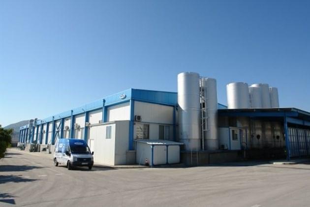 """Германската млечна компания """"Меггле"""" затваря завода си в Шумен, освобождава 95 души"""