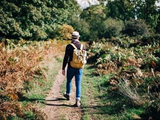 7 ползи от ежедневното ходене пеш