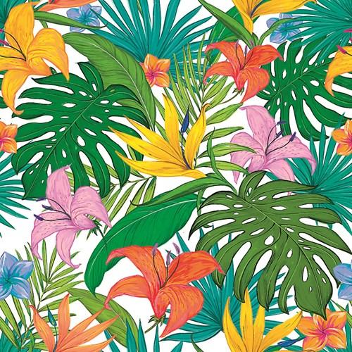 Чудовищата при цветята - монстери и филодендрони