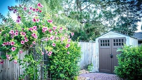 Как да направим романтична градината (галерия)