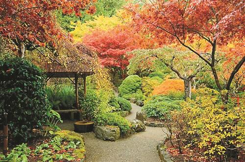 Преподредете градината през есента