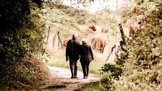 Сексът - забранен за хора под 70 години