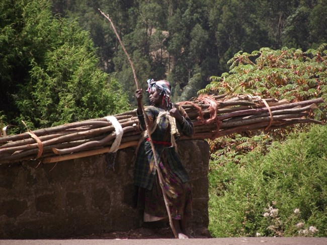 Тази етиопка носи дърва от три километра за семейството си.