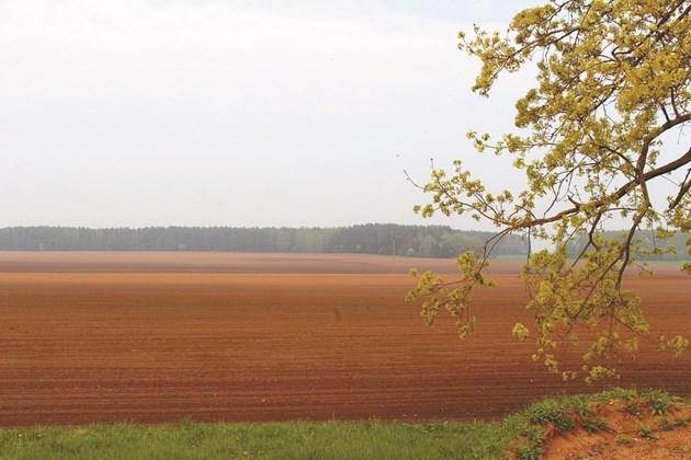 Някои от дейностите в селското стопанство водят до замърсяване