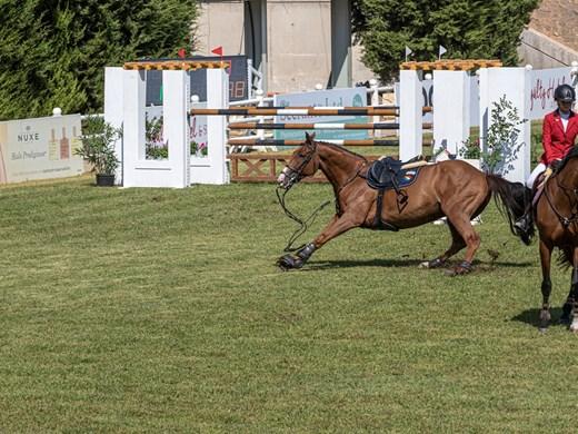 Изпитание за скорост и баланс на коне и ездачи е Балканиадата в Атина