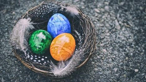 Как да сварим яйцата, без да се пукне нито едно