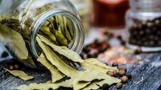 Дафиновият лист облекчава стомаха и ставите
