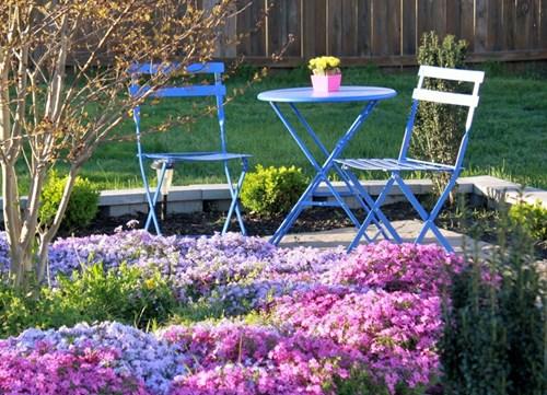 Пролетните цветя засаждайте под короните на дърветата