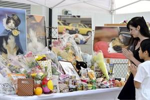 Местни японци опставят цветя пред снимки на котката Тама след погебението й през 2015 г.