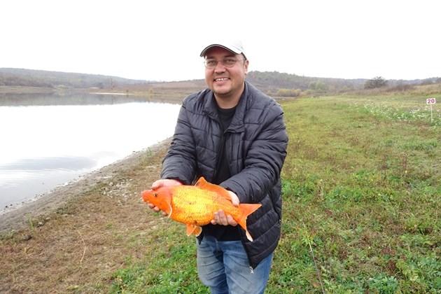Хванаха златната рибка и фазан
