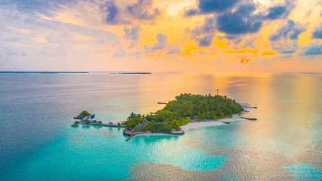 4-те зодии, които биха процъфтявали на самотен остров