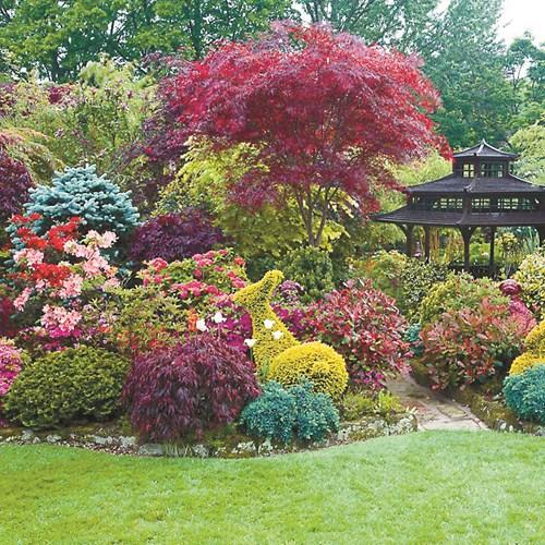 Градинският дизайн и есента