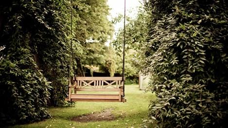 Христо Йорданов съветва какво ни трябва за красива градина