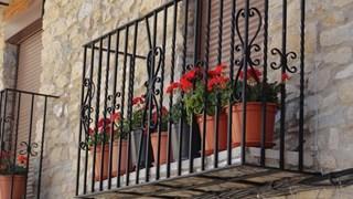 С какви цветя да украсим балконите си