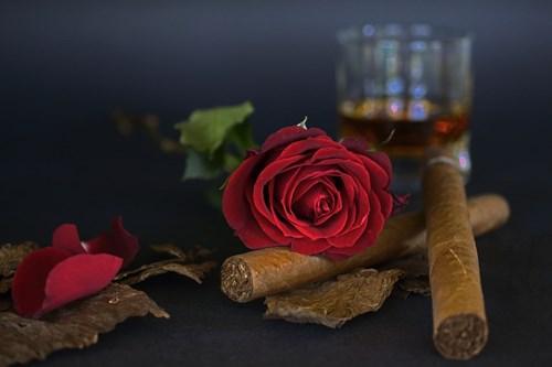 Могат ли цветята да уловят цигарения дим?