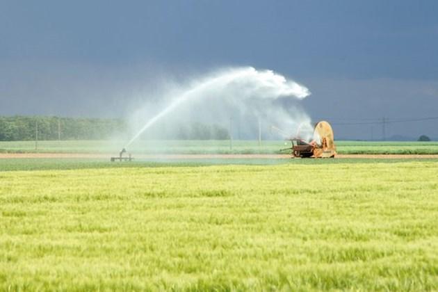 Инвестират 100 млн. лв. в инфраструктурата за напояване