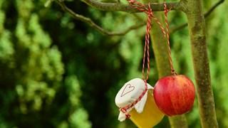 Нестандартни рецепти за компот от ябълки